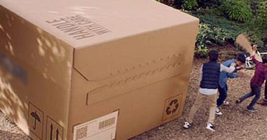 <b>«In Q1 2021, Corrugated Cardboard Packaging Prices to Grow at least 20%»</b>